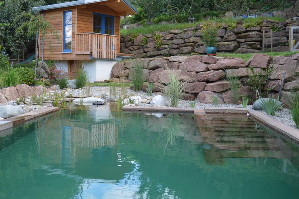 Schwimmteich naturteich gartenanlage in eberbachklaiber for Naturteich schwimmteich