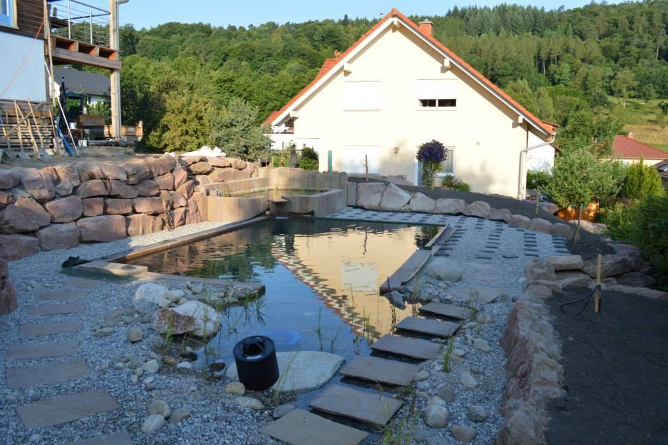 Exklusiver garten traumgarten gartenbeispiele in for Naturteich schwimmteich